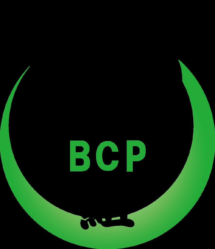 BCP01R入り