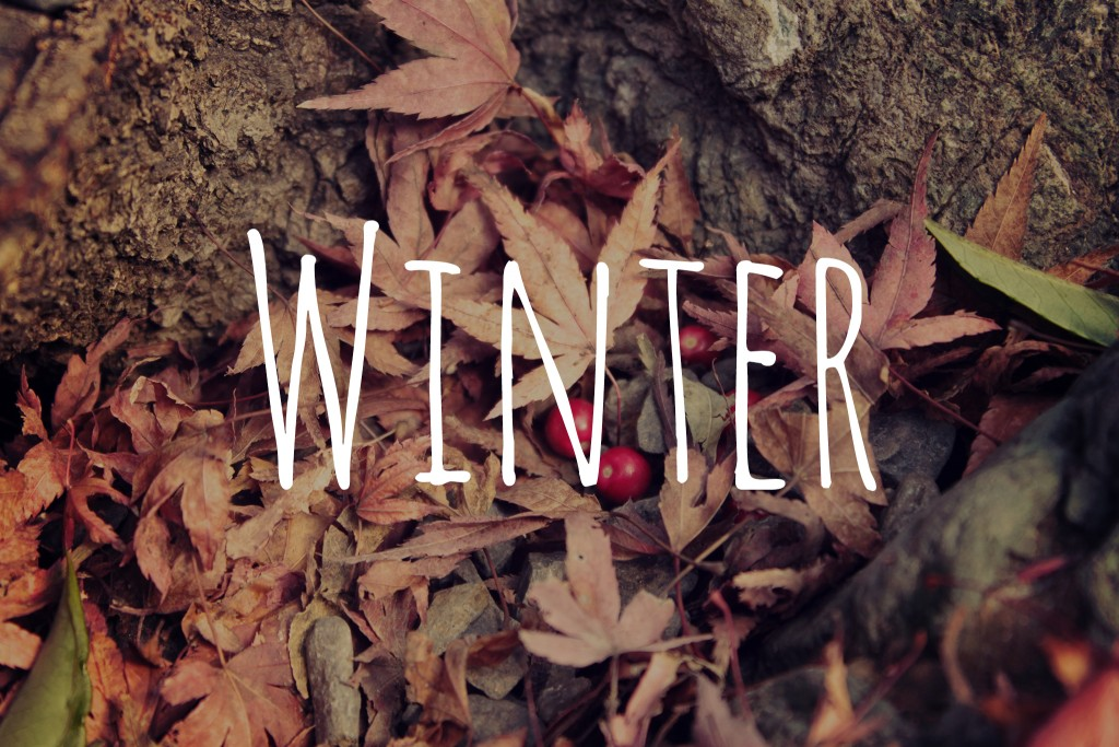 IMG_7108_winter